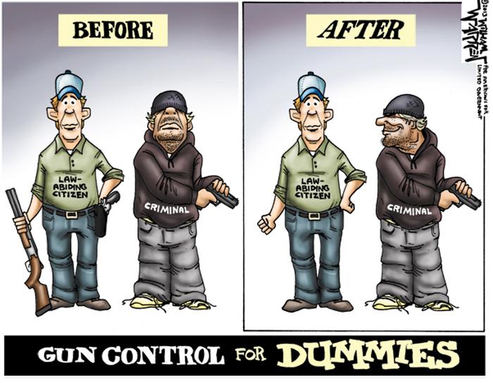 GunControlForDummies