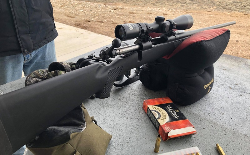 Savage Model 11 Review