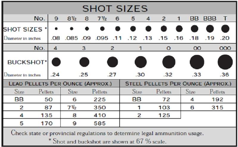 Shotshell Size Graph